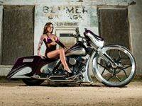 Purple Custom Bagger